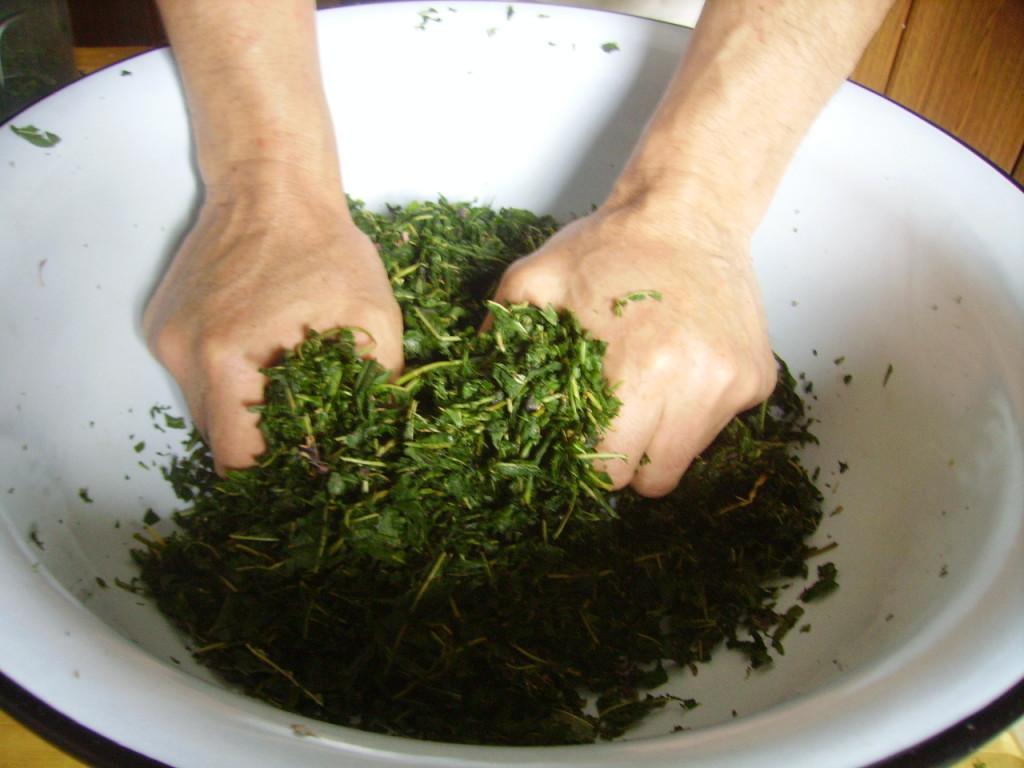 Ферментация кипрея