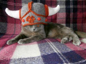 кот викинг