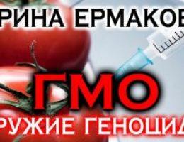 Миниатюра к статье Продукты с ГМО в России