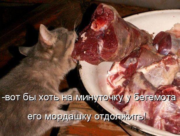 Запеченное мясо в рукаве
