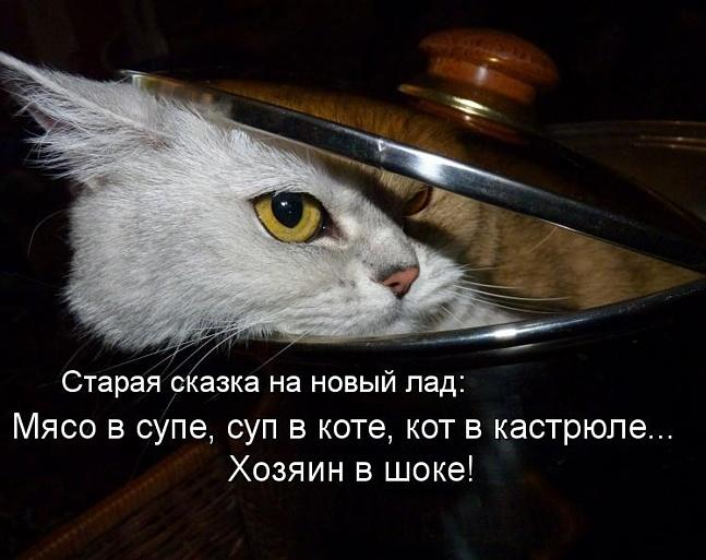 котсуп