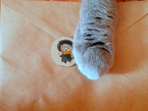 лапа кота